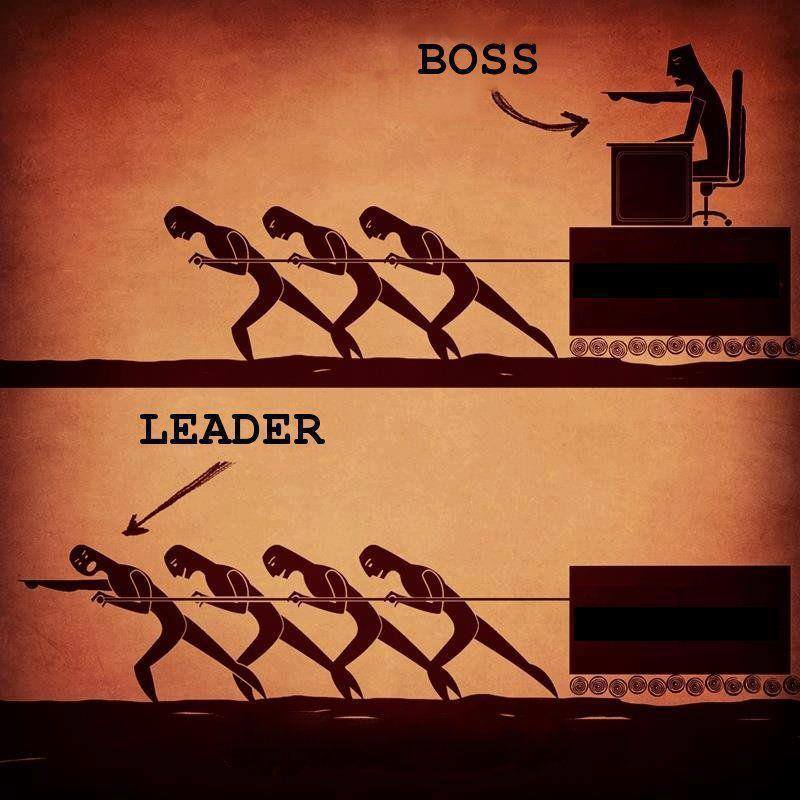 sef versus lider